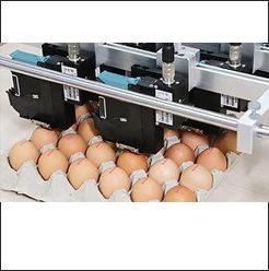 S3 Accessories – Egg Printer